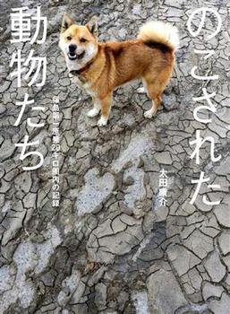 yasusukeohta2012a.jpg